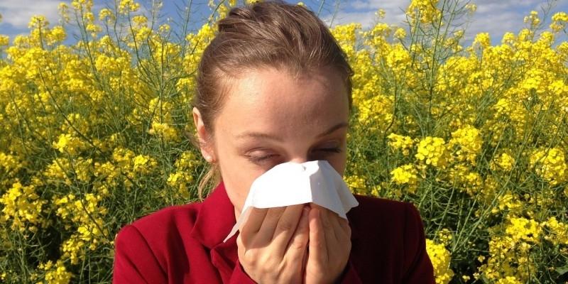 Il canale meteorologico aiuta a prevenire le allergie